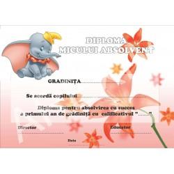 Diploma d11