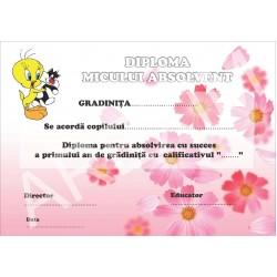 Diploma d12