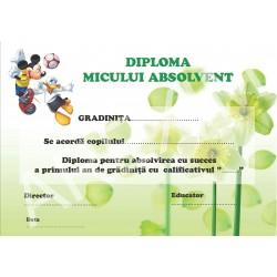 Diploma d13