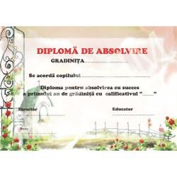Diploma d14