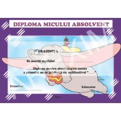 Diploma d17