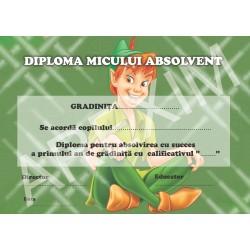 Diploma d8