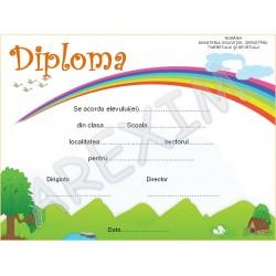 Diploma p13