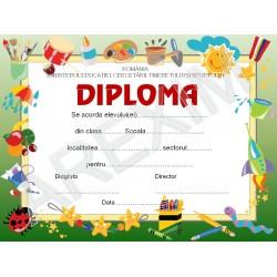 Diploma p17