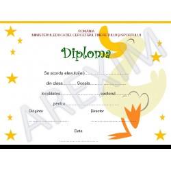 Diploma p5