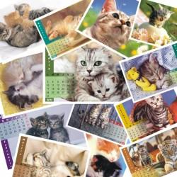 Calendar de birou  P1 cu pisicute format A5