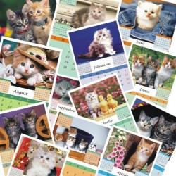 Calendar de perete P5 cu pisicute A5, A4 sau A3