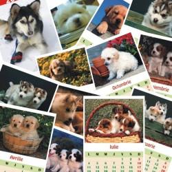 Calendar de perete C1 cu catelusi A4 sau A5