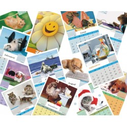 Calendar de perete cu animale funny PF A5; A4 sau A3